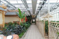 Botanical Garden Roof